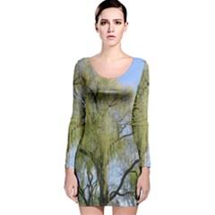 Willow Tree Long Sleeve Velvet Bodycon Dress