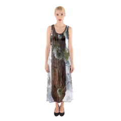 Winter Tree At Bogus Basin Sleeveless Maxi Dress