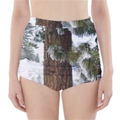 Winter Tree At Bogus Basin High-Waisted Bikini Bottoms