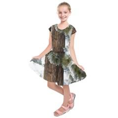 Winter Tree At Bogus Basin Kids  Short Sleeve Dress