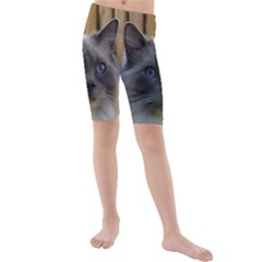 Ragdoll, Blue Kids  Mid Length Swim Shorts