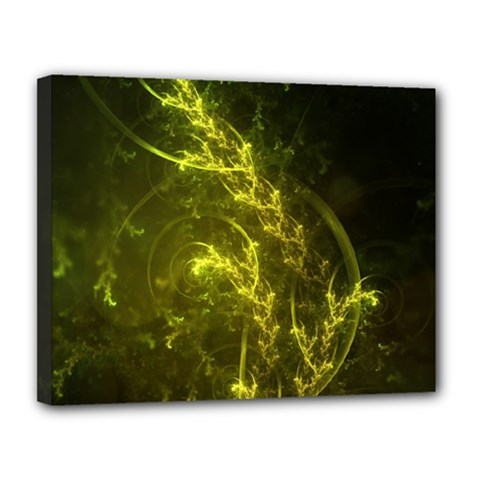 Beautiful Emerald Fairy Ferns in a Fractal Forest Canvas 14  x 11