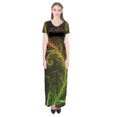 Fractal Hybrid Of Guzmania Tuti Fruitti and Ferns Short Sleeve Maxi Dress