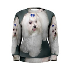 Maltese Full 2 Women s Sweatshirt