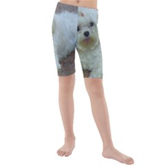 Maltese Laying Kids  Mid Length Swim Shorts
