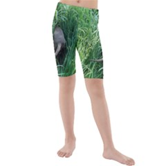 Weim In The Grass Kids  Mid Length Swim Shorts