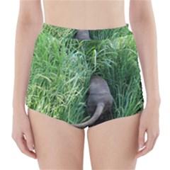 Weim In The Grass High-Waisted Bikini Bottoms