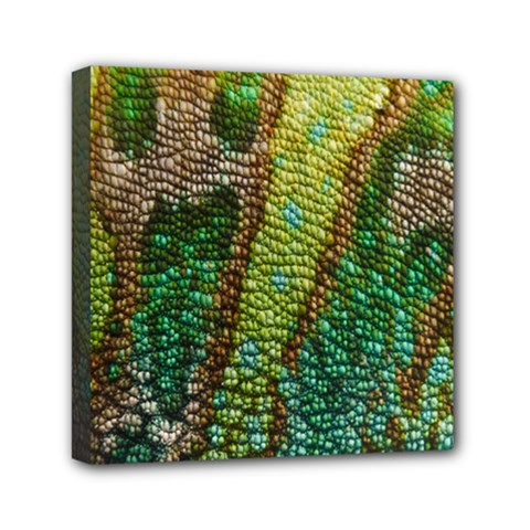 Chameleon Skin Texture Mini Canvas 6  x 6