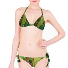 Chameleon Skin Texture Bikini Set