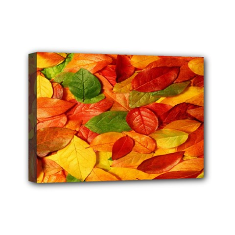 Leaves Texture Mini Canvas 7  x 5