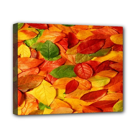 Leaves Texture Canvas 10  X 8