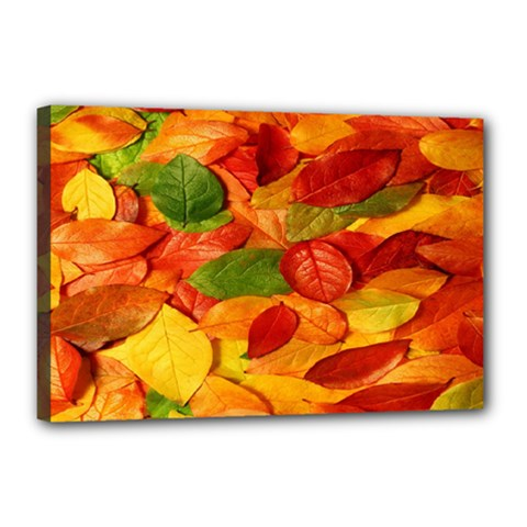 Leaves Texture Canvas 18  x 12