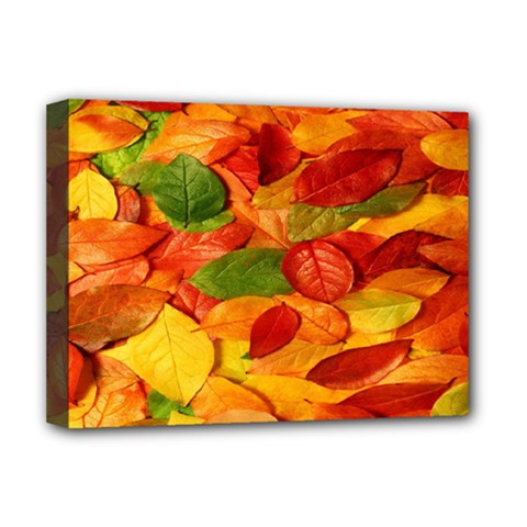 Leaves Texture Deluxe Canvas 16  X 12
