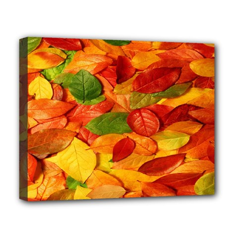 Leaves Texture Deluxe Canvas 20  X 16