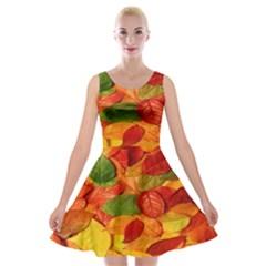 Leaves Texture Velvet Skater Dress