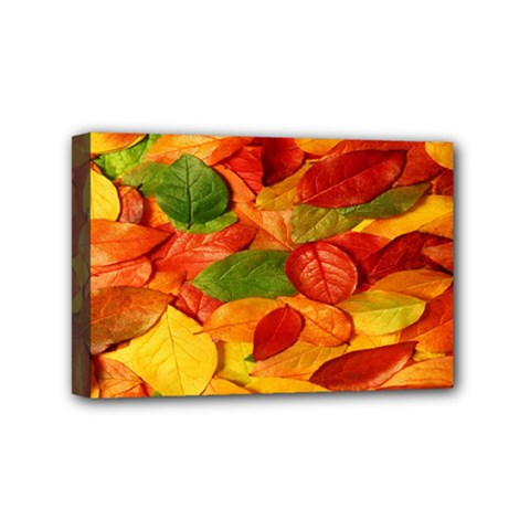 Leaves Texture Mini Canvas 6  x 4