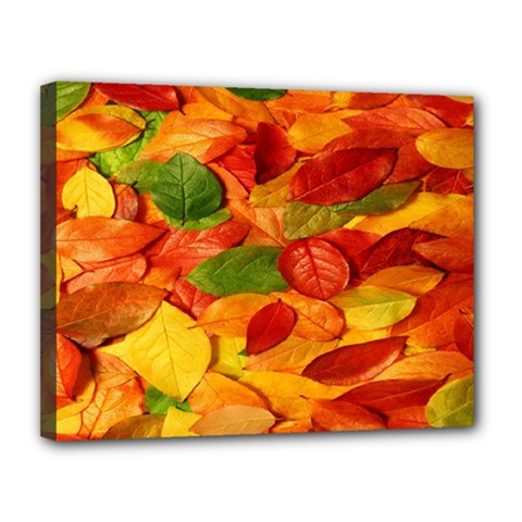 Leaves Texture Canvas 14  X 11