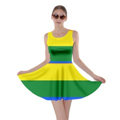 Pride rainbow flag Skater Dress