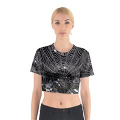 Spider Web Wallpaper 14 Cotton Crop Top