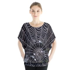 Spider Web Wallpaper 14 Blouse