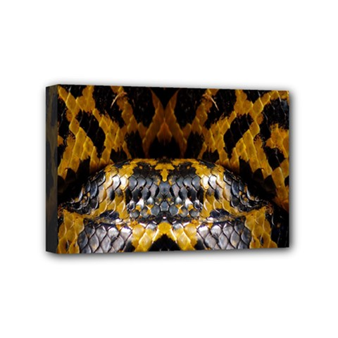 Textures Snake Skin Patterns Mini Canvas 6  X 4