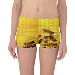 Sweden Honey Reversible Boyleg Bikini Bottoms