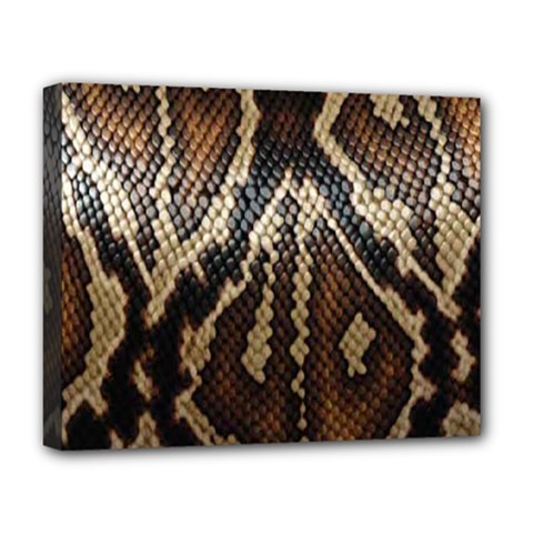 Snake Skin O Lay Deluxe Canvas 20  X 16
