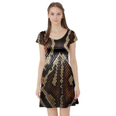 Snake Skin O Lay Short Sleeve Skater Dress