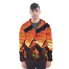 Maple Tree Nice Hooded Wind Breaker (Men)