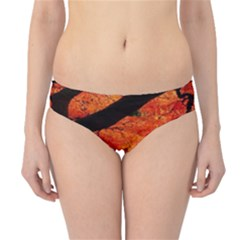 Maple Tree Nice Hipster Bikini Bottoms