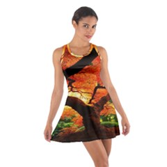 Maple Tree Nice Cotton Racerback Dress