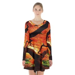 Maple Tree Nice Long Sleeve Velvet V Neck Dress