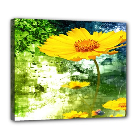 Yellow Flowers Deluxe Canvas 24  X 20