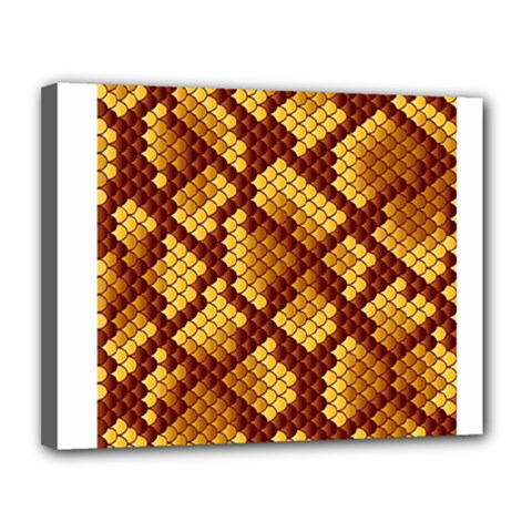 Snake Skin Pattern Vector Canvas 14  x 11