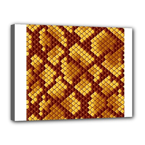 Snake Skin Pattern Vector Canvas 16  X 12