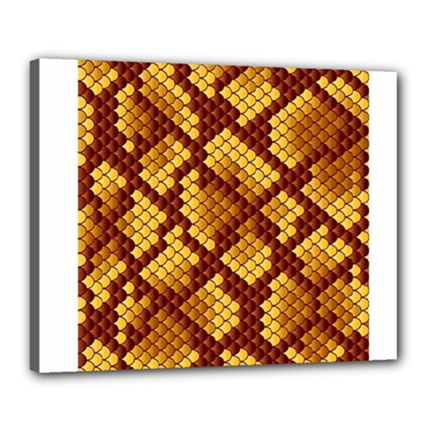 Snake Skin Pattern Vector Canvas 20  x 16