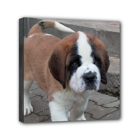 St Bernard Pup Mini Canvas 6  x 6