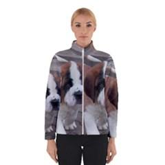 St Bernard Pup Winterwear