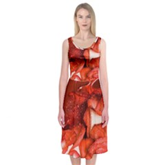 Nice Rose With Water Midi Sleeveless Dress