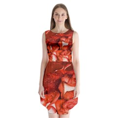 Nice Rose With Water Sleeveless Chiffon Dress