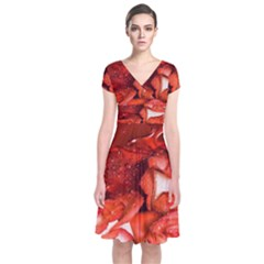 Nice Rose With Water Short Sleeve Front Wrap Dress
