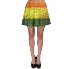 Five Wall Colour Skater Skirt
