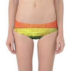 Five Wall Colour Classic Bikini Bottoms