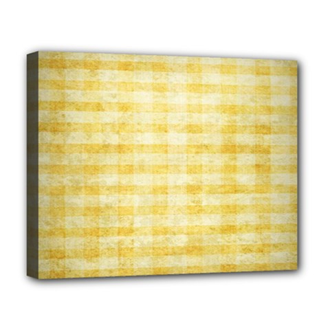 Spring Yellow Gingham Deluxe Canvas 20  X 16