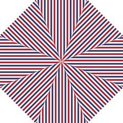 USA Flag Red White and Flag Blue Wide Stripes Hook Handle Umbrellas (Medium)