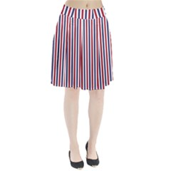 USA Flag Red White and Flag Blue Wide Stripes Pleated Skirt