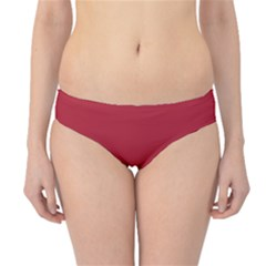 USA Flag Red Blood Red classic solid color  Hipster Bikini Bottoms
