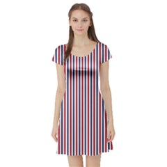 USA Flag Red and Flag Blue Narrow Thin Stripes  Short Sleeve Skater Dress