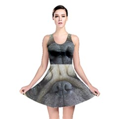 Pug Fawn Eyes Reversible Skater Dress