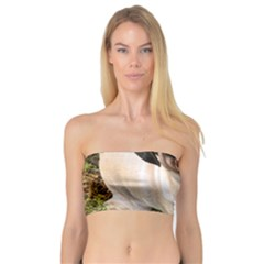 Pug Fawn Full Bandeau Top